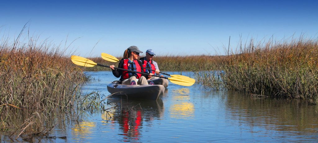 Amelia Island Watersport & Island Tours 1