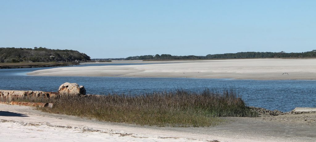 Amelia Island Tours of Alimacani 1